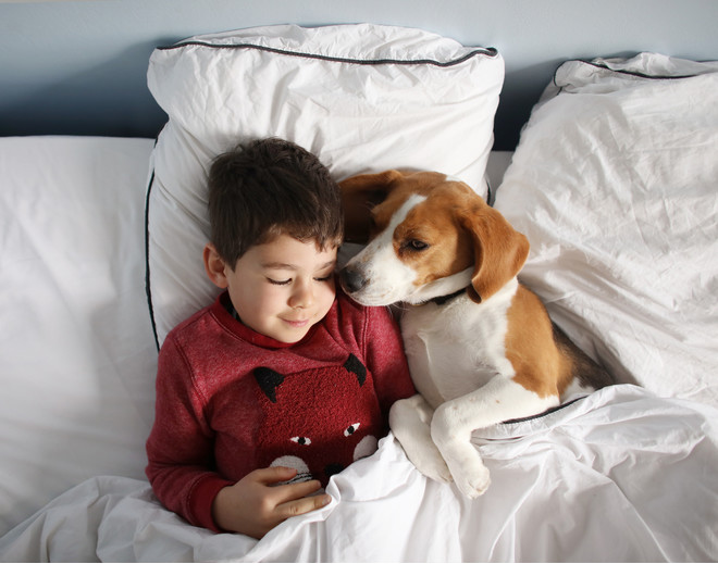 how allergic to dogs is manifested in children