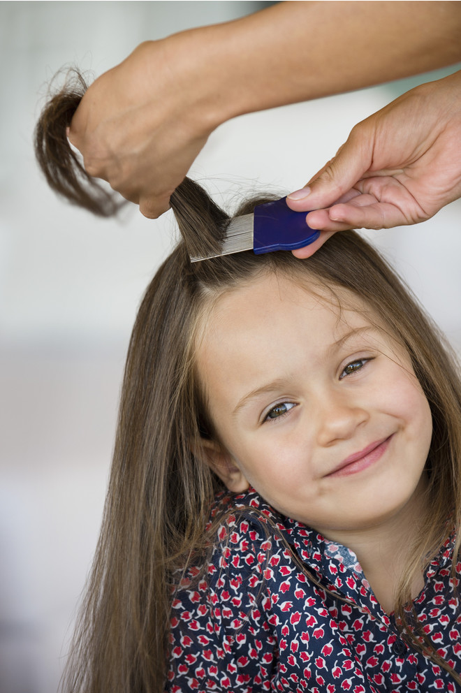 how to get lice out of a child with folk remedies