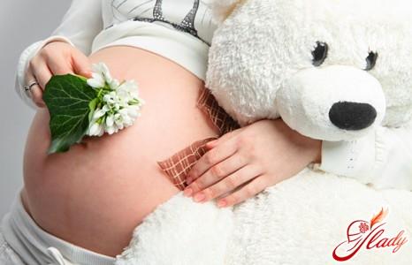 вагітність 13 тиждень