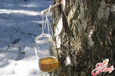 than useful birch sap