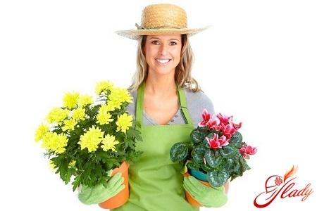 diseases of flowers