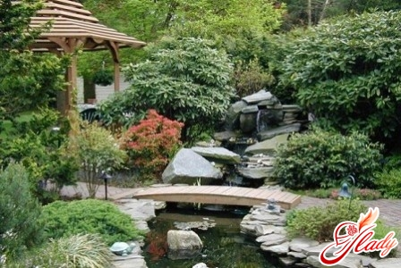 stages of choosing a style in landscape design
