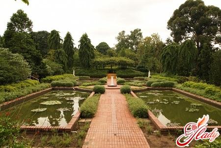 garden albert kam