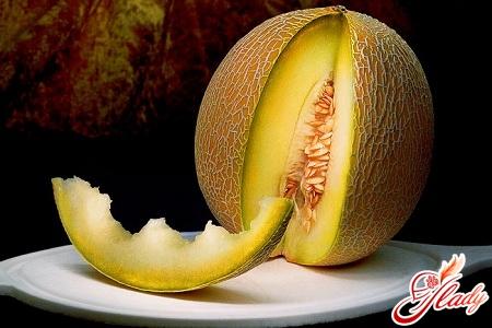 melon growing