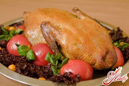 stuffed duck with apples