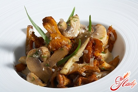 fricassee from chicken