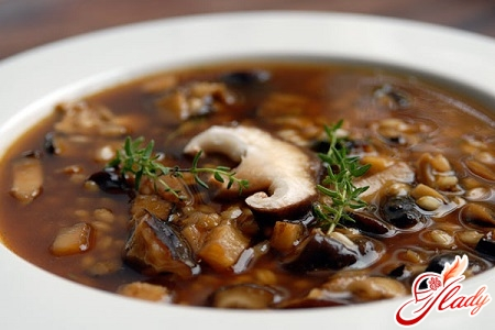different recipes of mushroom soup