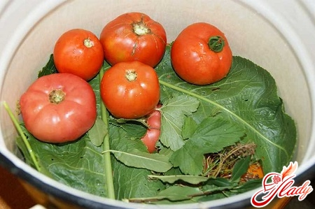 preparation of cucumbers and tomato to a twist