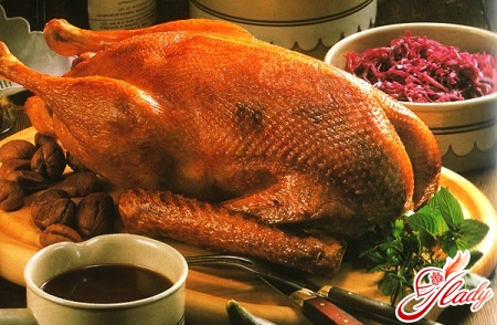 recipe goose in the oven