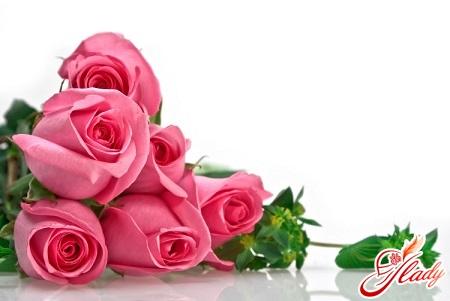 grooming roses in a vase
