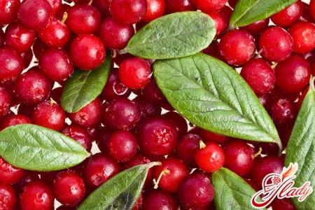 cranberry mors recipe
