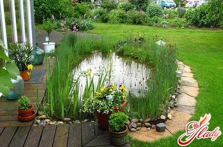 cozy garden with own hands