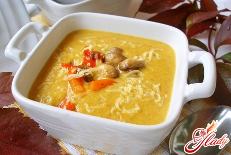 pumpkin cream soup with additives