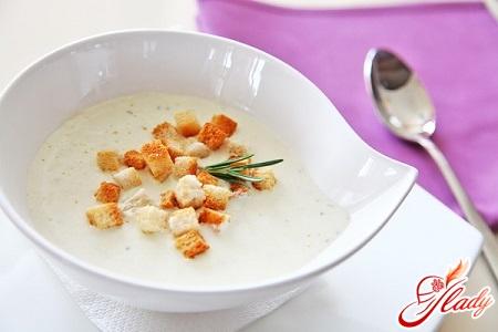 delicious cheese cream soup