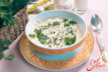 chicken soup puree
