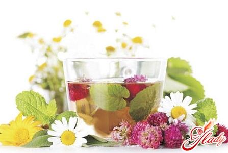 чай з народними травами для лікування бронхіту