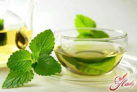 green tea with lactation