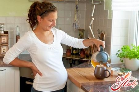 mint for pregnant women