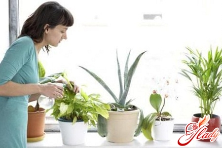 home watering system