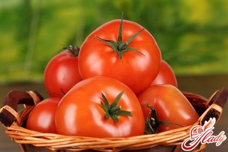 how to grow seedlings tomato