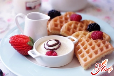 recipe for electric wafer waffle