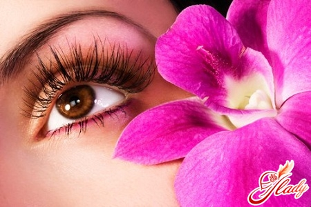 how to care for eyelashes