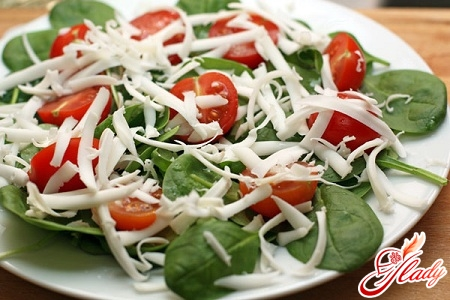 salads from spinach