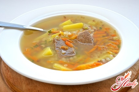 delicious soup with beef