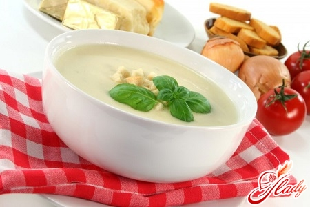 soup puree for the whole family