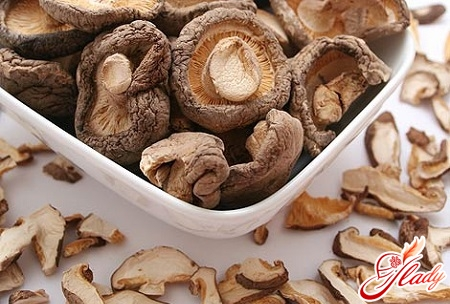 mushroom drying process