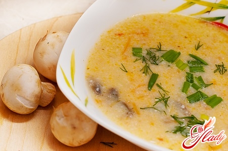 how to cook a cheese soup puree