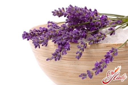 herbs harmful during pregnancy