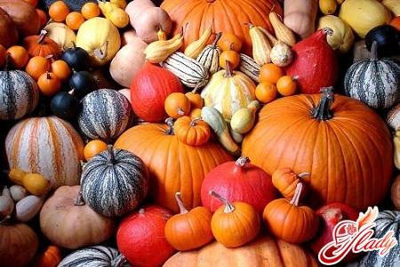 pumpkin useful properties