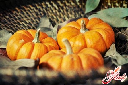 useful properties of pumpkin
