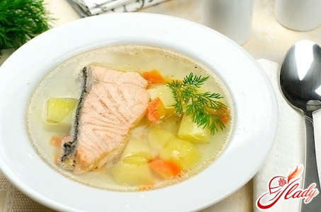 different recipes soup from salmon
