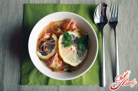 recipe for soup from salmon