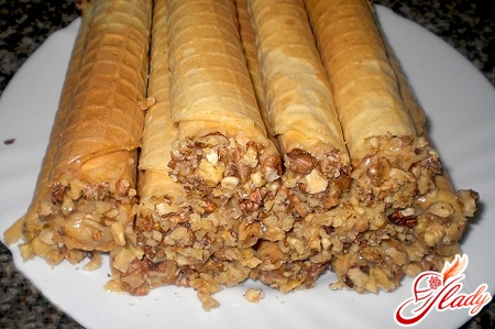 recipe for wafer tubules