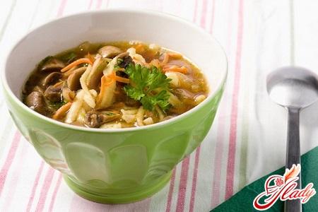 chicken soup with mushroom broth
