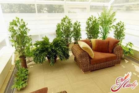 beautiful winter garden in the apartment